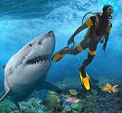 Cá mập điên