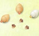 Chăn vịt